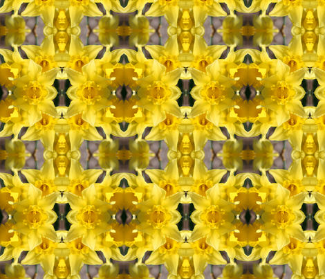 Daffodils_5673 fabric by falcon11 on Spoonflower - custom fabric