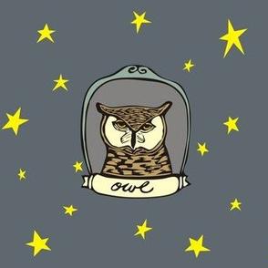 Framed Owl and Stars