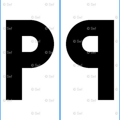 symmetry group pm