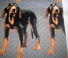 Rrblack_and_tan_hound_comment_316092_thumb
