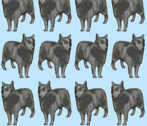 Schipperke fabric by dogdaze_ on Spoonflower - custom fabric