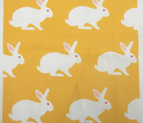 Rwhite_rabbit_on_yellow._comment_281711_preview