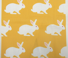 Rwhite_rabbit_on_yellow._comment_281711_thumb