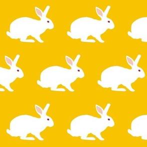 White Rabbit on Goldenrod