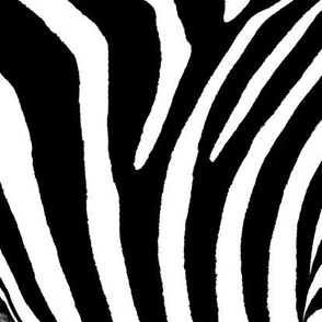 ZebraJungleTiki