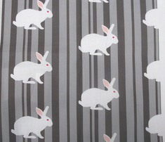 Rwhite_rabbit_on_grey_stripe._comment_281714_thumb