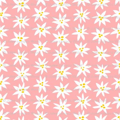 Connie Lynn—Pink Daisy