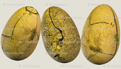 Cracked Stone Easter Eggs
