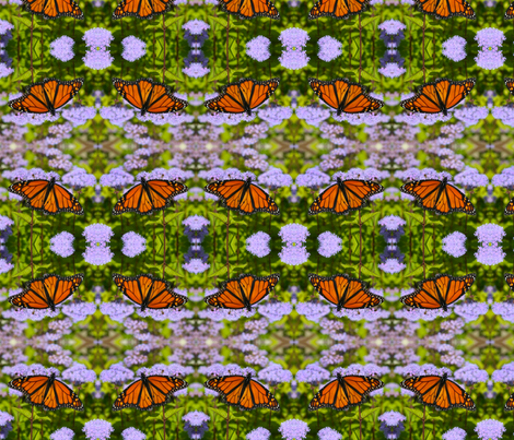 Monarch Butterflies_1664 fabric by falcon11 on Spoonflower - custom fabric