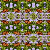 Rmonarch_butterfly_1664_8x8_shop_thumb