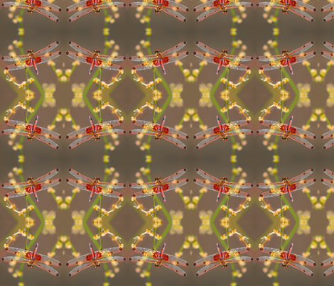 Red Dragonflies_0052 fabric by falcon11 on Spoonflower - custom fabric