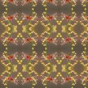 Rdragonfly_0052rt_8x8_shop_thumb