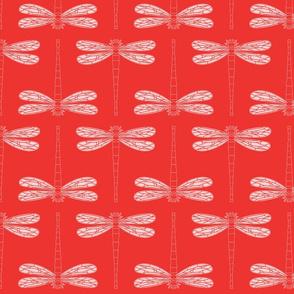 dragonfly in poppy red