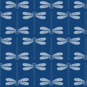 dragonfly in monaco blue