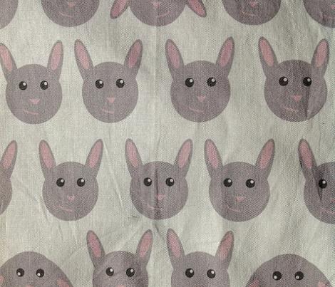 Geometric bunnies