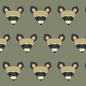 rambunctious raccoon