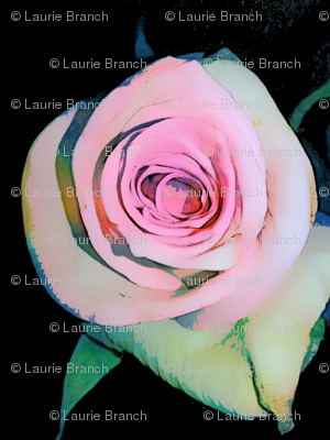 SPOONFLOWER_pink_rose_PNG