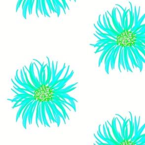 Lime Aqua Flower