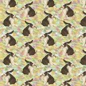 Rrdutch_lop_bunny_2_shop_thumb