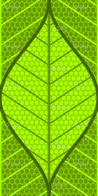 symmetric sine leaf pair