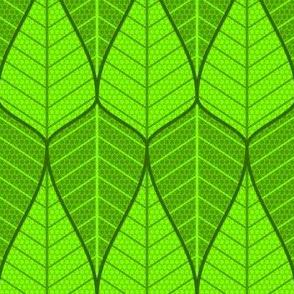 asymmetric sine leaf pair