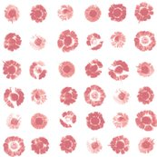 Flower-prints-pink_f6a7a3_shop_thumb