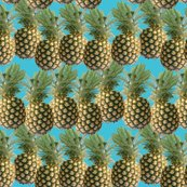Rpineapplepattern-01_shop_thumb