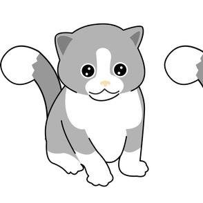 Catito_tail