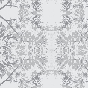 Japanese Maple Leaves in Silver