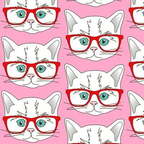 Kitten Hipster Pink