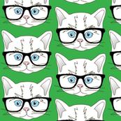 Kitten Hipster Green