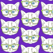 Kitten Hipster Purple