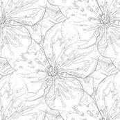 Blosssomblack_and_white2_shop_thumb