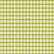 Daisy__green_variant_2_original_version_shop_thumb