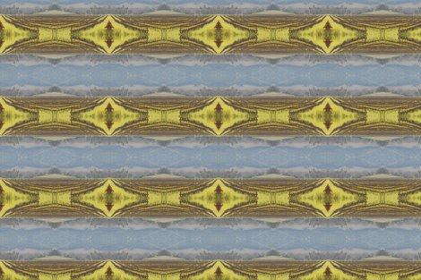 Rrrrrrnapa_2013_-_5_tablecloth_shop_preview