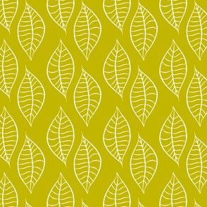 Leaves in Citron