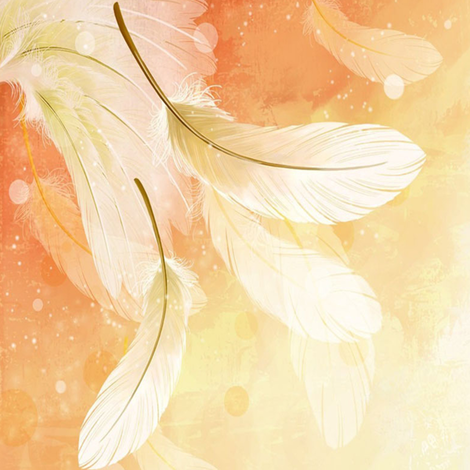 peach feathers fabric by krs_expressions on Spoonflower - custom fabric