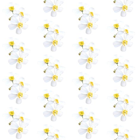 Rrrwhitewildflowerhitchhikerweedbypinksodapop_shop_preview