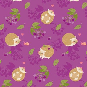 Hedgehogs and berries
