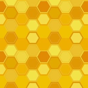 Honey Comb Hideout
