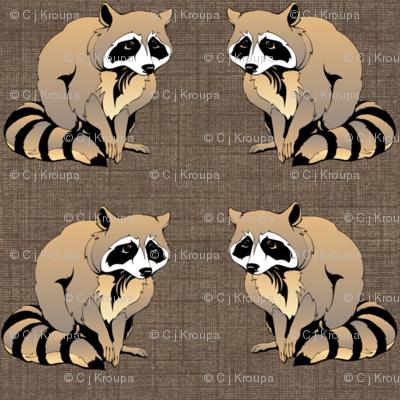 Melancholy Raccoons