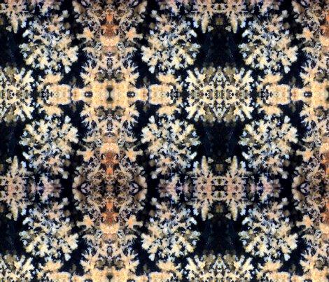 Robsidian-flower-2013a-03mg-print-fq_shop_preview