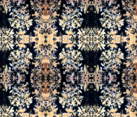 Midnight Coral 2 (Flower Obsidian) fabric by prettyrockdesigns on Spoonflower - custom fabric