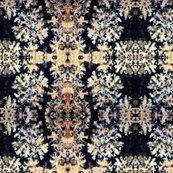 Robsidian-flower-2013a-03mg-print-fq_shop_thumb