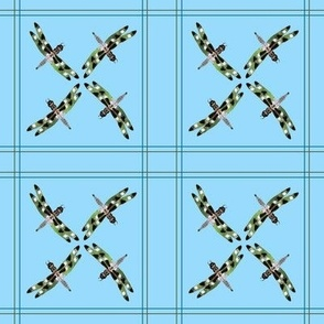 Dragonfly Squares