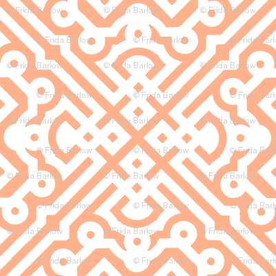 Modern Embroidered Labyrinth in Peach Nectarine