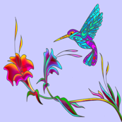 hummingbird on blue
