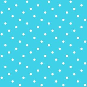 Summer Cottage - Aqua Dots
