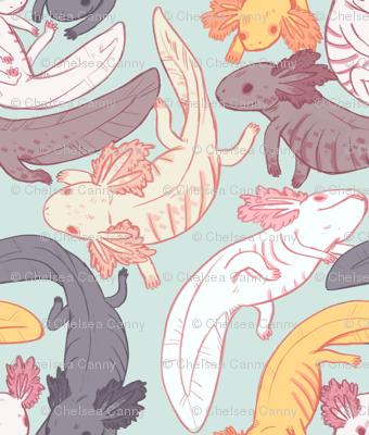 axolotls