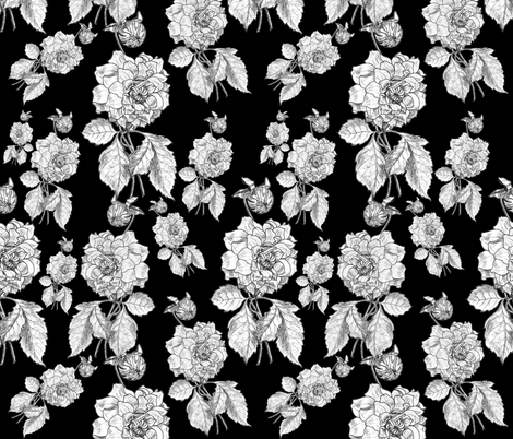 Dalia inverted fabric by whimzwhirled on Spoonflower - custom fabric
